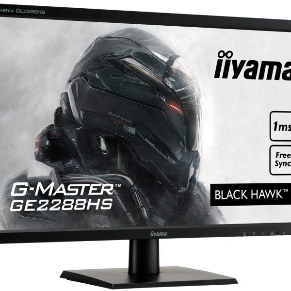 Ecran iiyama G-Master 22